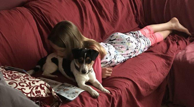 Gedachtenspinsel: Kan een hond transgender zijn?